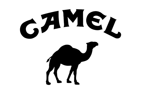 Code peinture Camel