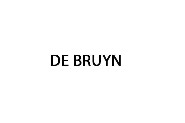 Code peinture De Bruyn
