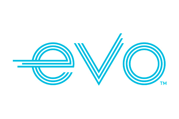 Code peinture Evo