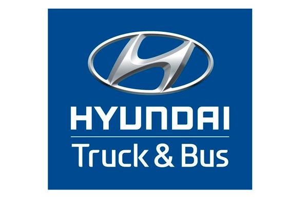 Code peinture Hyundai Truck