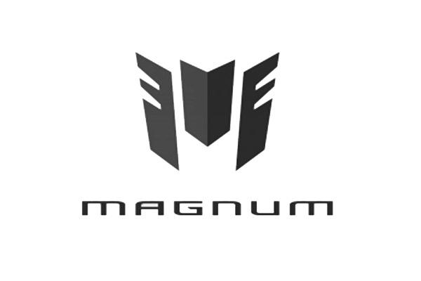 Code peinture Magnum
