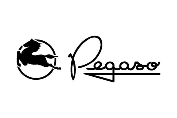 Code peinture Pegaso