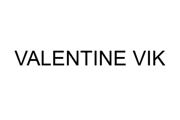 Code peinture Valentine Vik